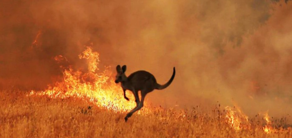 Code Red Climate Warning Australia
